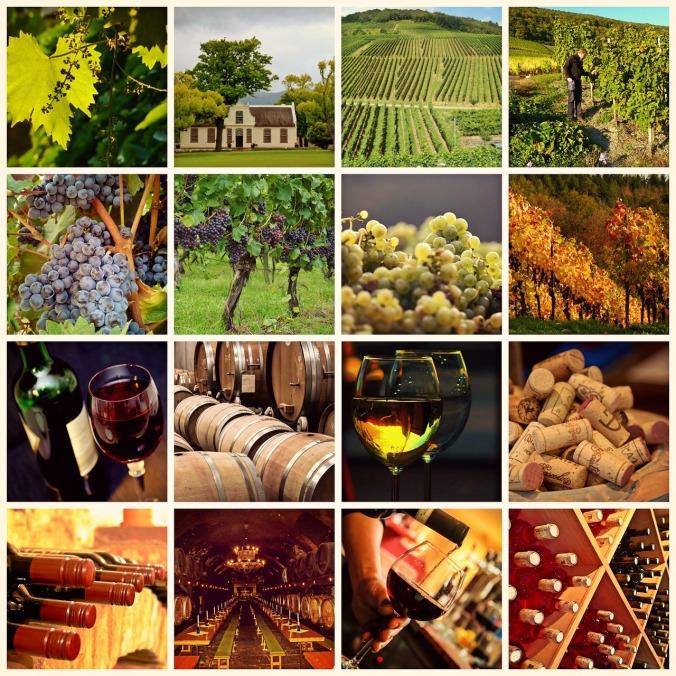 wine-1597376_1280